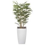 【送料無料】アートゴールデンツリー1.8 (人工観葉植物) 高さ180cm 光触媒機能付 (114F950)