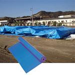 養生シートPE輸入クロスシートブルー5.4X5.4m (55611-2*)