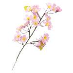 ニュー桜スプレイ (13100)