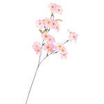 スプレイ シルク桜 (1805)