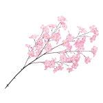 大枝 大桜 (12548)