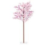 桜立木セット (1891)