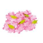桜 50枚入りセット (10521)