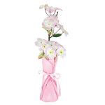 ハイポット桜 (12576)