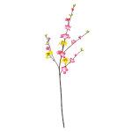 ミックススプレイ 菜の花/桃 (12534)