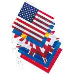 ビニール万国旗(大)8カ国 (644)
