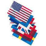 ビニール万国旗(小)8カ国 (642)