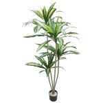 ドラセナツリー (23080)