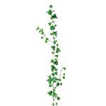 ミニリーフガーランドオランダアイビー (22539)