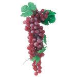 ポリブドウ(大)ワイン (3969)