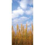 タペストリー麦畑 (34156)