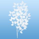 ホワイトリーフブランチ (6900)