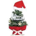 サンタハットクリスマスツリー (a044460)