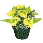 かご盛り菜の花 (10003)