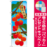 のぼり旗 さくらんぼ 絵旗 -1 (21414) [プレゼント付]