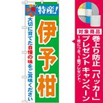 のぼり旗 特産!伊予柑 (21481) [プレゼント付]