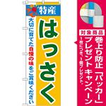のぼり旗 特産!はっさく (21482) [プレゼント付]