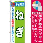 のぼり旗 特産!ねぎ (21497) [プレゼント付]