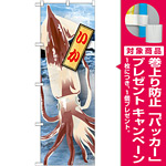 のぼり旗 いか 絵旗 (21595) [プレゼント付]