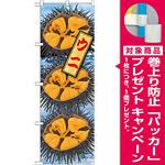 のぼり旗 ウニ 絵旗 -1 (21598) [プレゼント付]