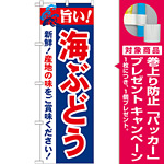 のぼり旗 旨い!海ぶどう (21664) [プレゼント付]