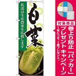 のぼり旗 白菜 写真 (21913) [プレゼント付]