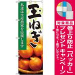 のぼり旗 玉ねぎ 写真 (21933) [プレゼント付]