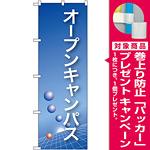 のぼり旗 オープンキャンパス ブルーバック (22325) [プレゼント付]