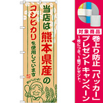 ご当地のぼり旗 熊本県産 内容:コシヒカリ (SNB-946) [プレゼント付]