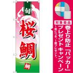 のぼり旗  桜鯛 (498) [プレゼント付]