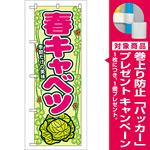 のぼり旗 表示:春キャベツ (7871) [プレゼント付]