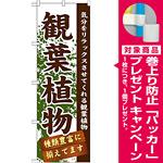 のぼり旗 表示:観葉植物 (GNB-1071) [プレゼント付]