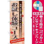 のぼり旗 お試し体験コース (GNB-1389) [プレゼント付]