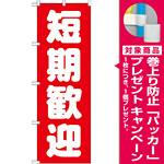 のぼり旗 短期歓迎 (GNB-1439) [プレゼント付]