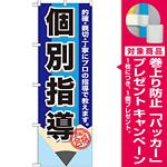 のぼり旗 個別指導 鉛筆 (GNB-1573) [プレゼント付]