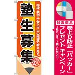 のぼり旗 塾生募集 (GNB-1574) [プレゼント付]