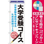 のぼり旗 大学受験コース (GNB-1590) [プレゼント付]