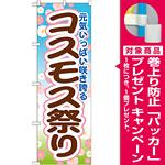 のぼり旗 コスモス祭り (GNB-1636) [プレゼント付]