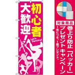 のぼり旗 初心者 大歓迎! (GNB-2116) [プレゼント付]