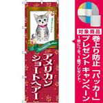 のぼり旗 アメリカンショートヘアー (GNB-2418) [プレゼント付]