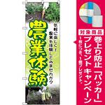 のぼり旗 農業体験 (GNB-2533) [プレゼント付]