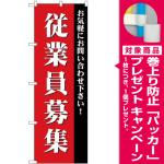 (新)のぼり旗 従業員募集 (GNB-2713) [プレゼント付]