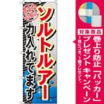 のぼり旗 ソルトルアー (GNB-380) [プレゼント付]
