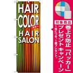 のぼり旗 ヘアーサロン カラー (GNB-501) [プレゼント付]