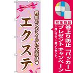 のぼり旗 エクステ (GNB-506) [プレゼント付]