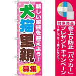 のぼり旗 犬猫里親募集 (GNB-560) [プレゼント付]