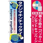 のぼり旗 タテジマキンチャクダイ (GNB-578) [プレゼント付]