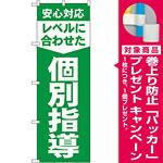 のぼり旗 レベルに合わせた 個別指導 (GNB-61) [プレゼント付]