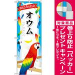 のぼり旗 オウム (GNB-610) [プレゼント付]