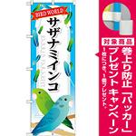 のぼり旗 サザナミインコ (GNB-614) [プレゼント付]